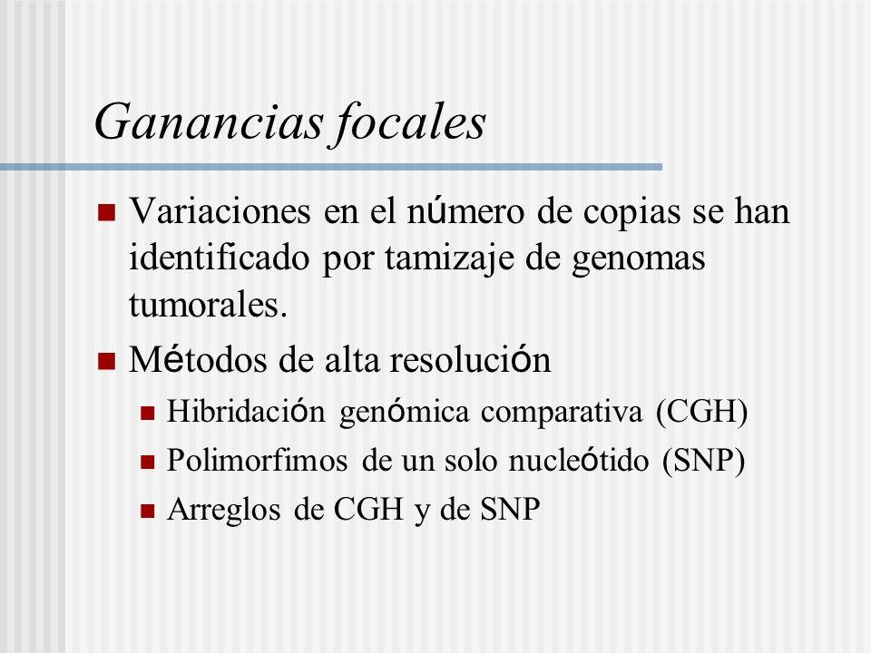 Ganancias focales Variaciones en el número de copias se han identificado por tamizaje de genomas tumorales.