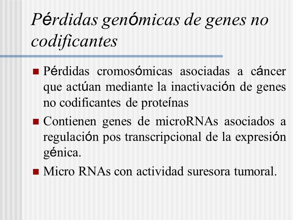 Pérdidas genómicas de genes no codificantes