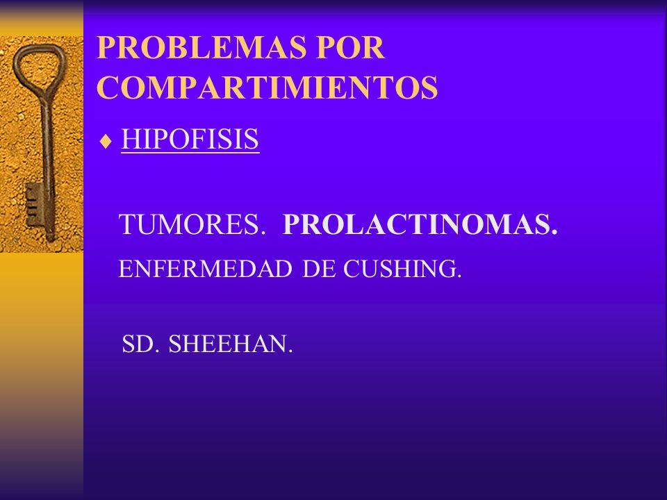 PROBLEMAS POR COMPARTIMIENTOS
