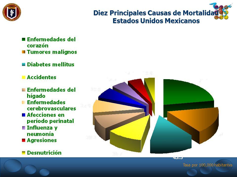 Diez Principales Causas de Mortalidad Estados Unidos Mexicanos