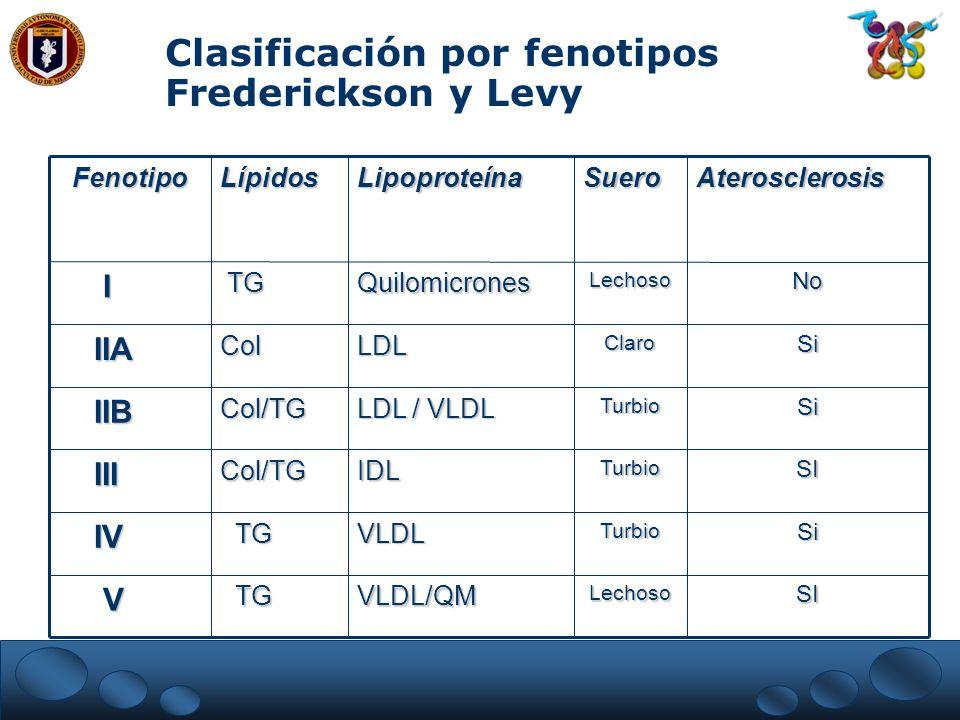 Clasificación por fenotipos Frederickson y Levy