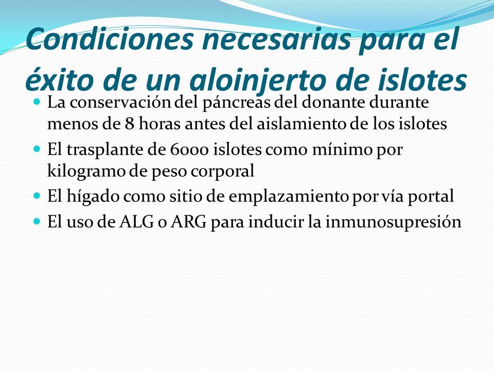 Condiciones necesarias para el éxito de un aloinjerto de islotes