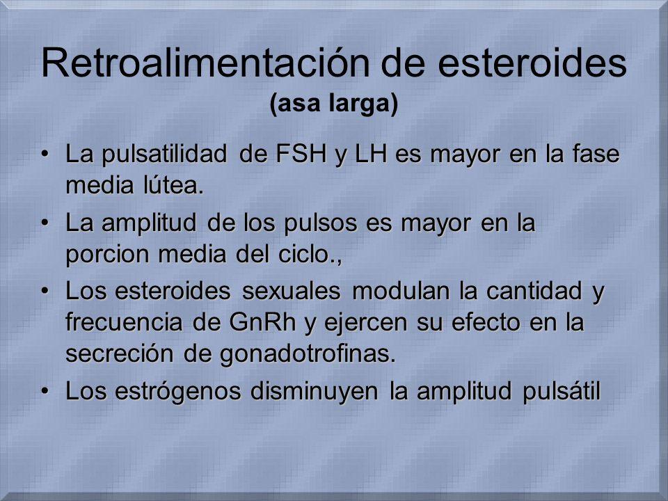 Retroalimentación de esteroides (asa larga)