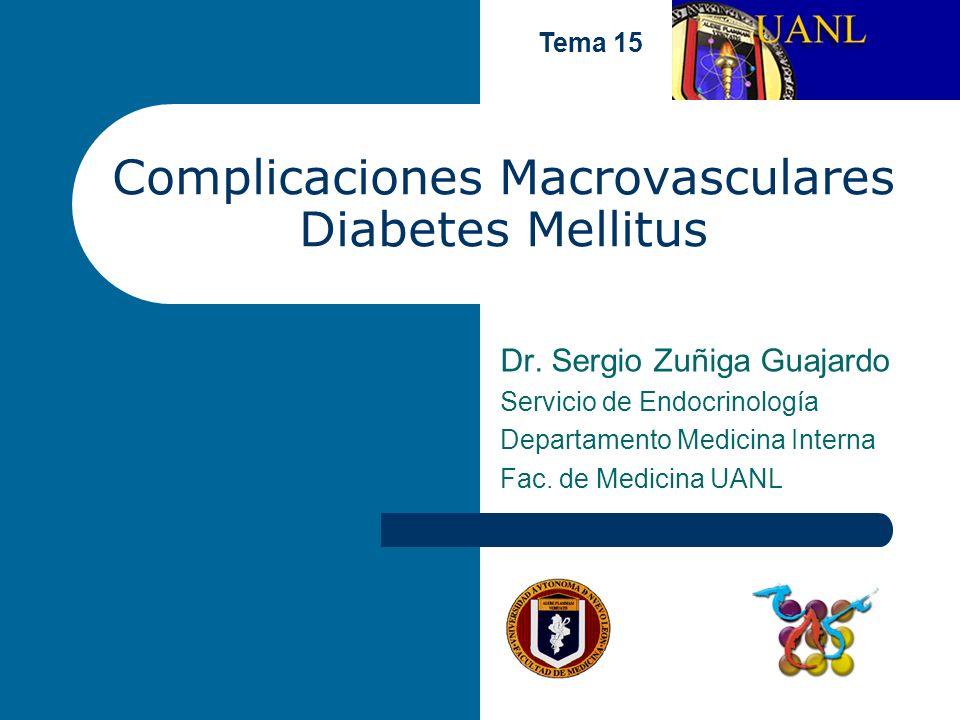 Complicaciones Macrovasculares Diabetes Mellitus