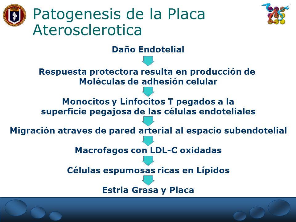 Patogenesis de la Placa Aterosclerotica