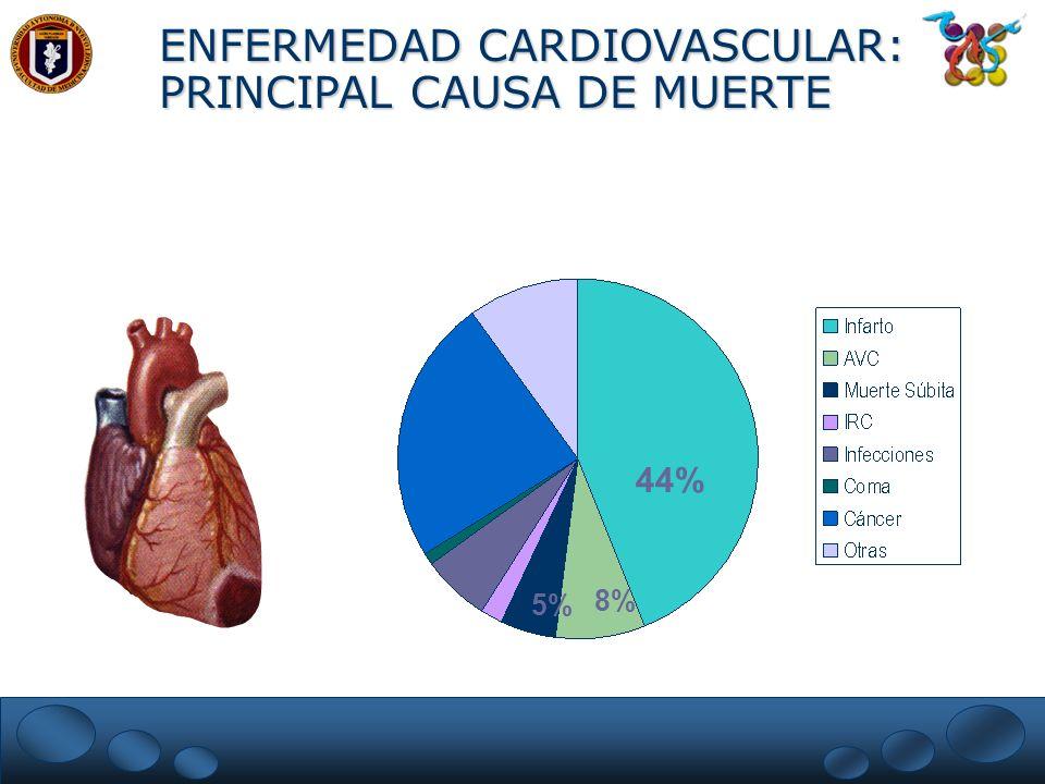 ENFERMEDAD CARDIOVASCULAR: PRINCIPAL CAUSA DE MUERTE