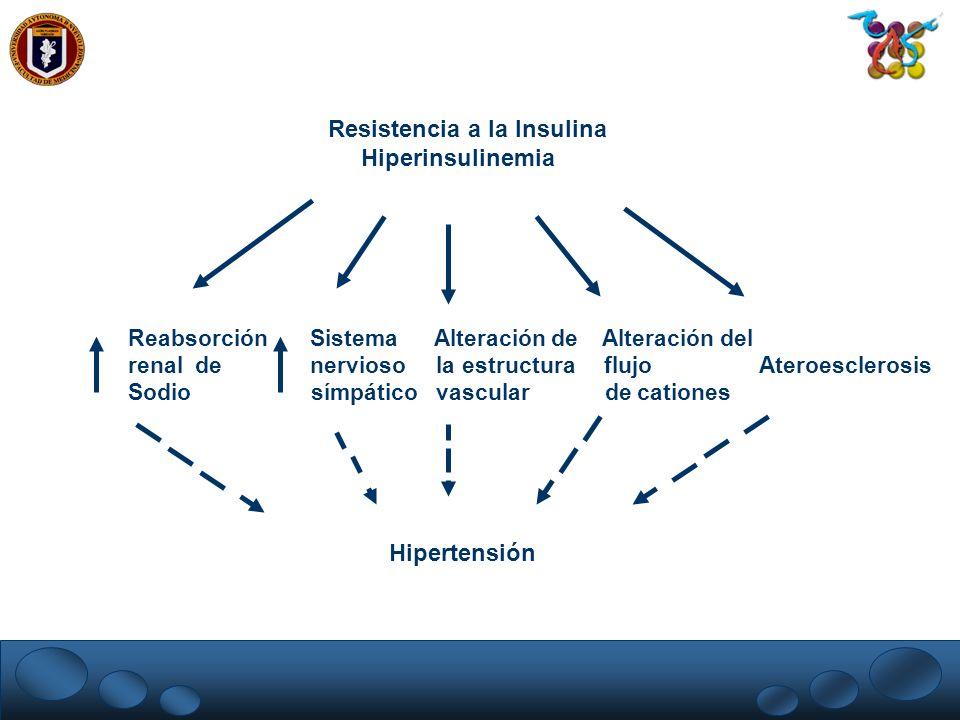 Resistencia a la Insulina Hiperinsulinemia