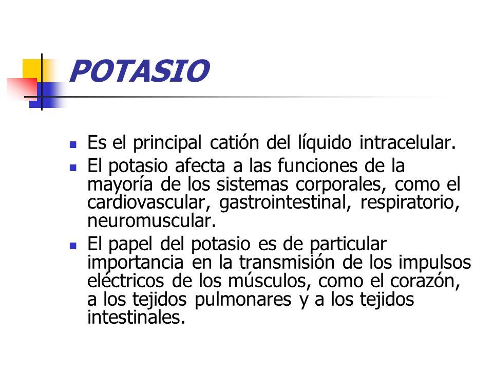 POTASIO Es el principal catión del líquido intracelular.
