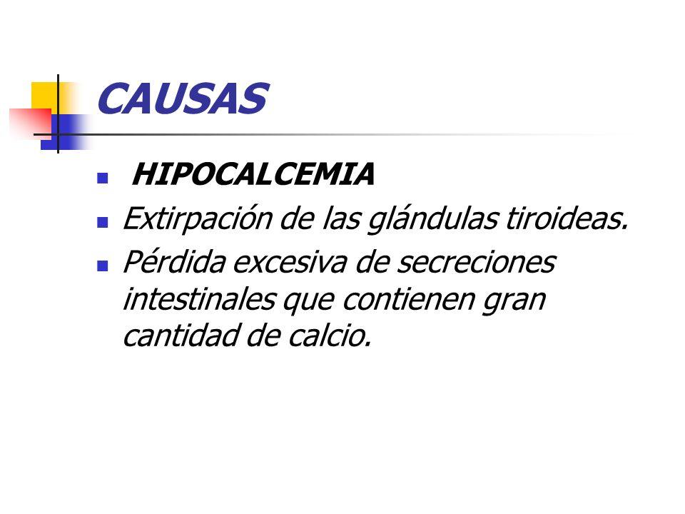 CAUSAS HIPOCALCEMIA Extirpación de las glándulas tiroideas.