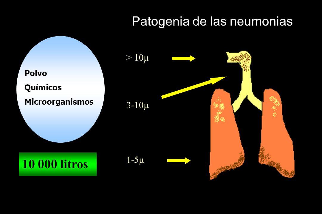 Patogenia de las neumonias