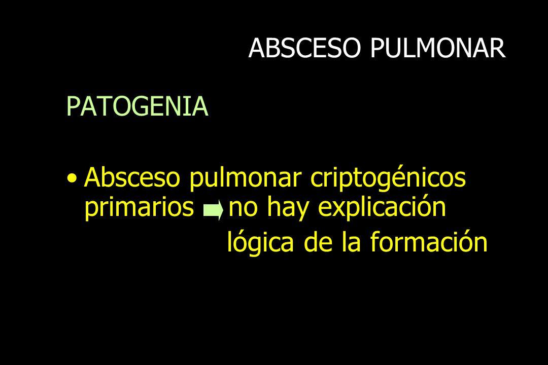ABSCESO PULMONARPATOGENIA.Absceso pulmonar criptogénicos primarios no hay explicación.