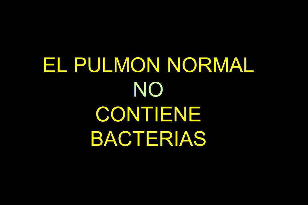 EL PULMON NORMAL NO CONTIENE BACTERIAS