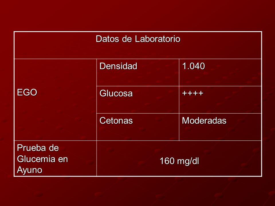 Datos de LaboratorioEGO. Densidad. 1.040. Glucosa. ++++ Cetonas. Moderadas. Prueba de Glucemia en Ayuno.