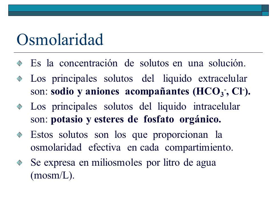 Osmolaridad Es la concentración de solutos en una solución.