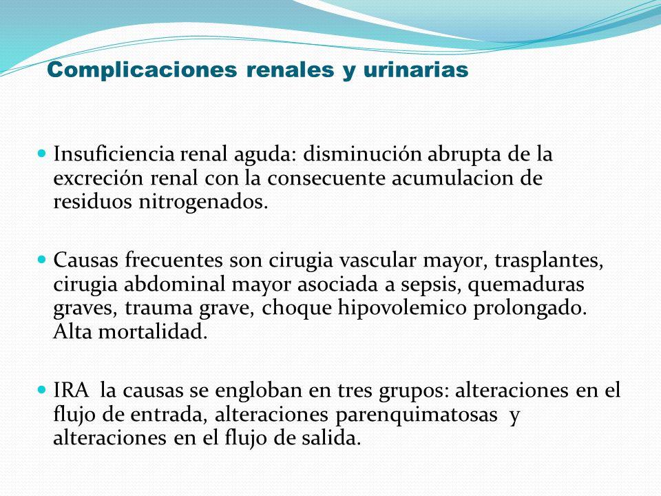 Complicaciones renales y urinarias