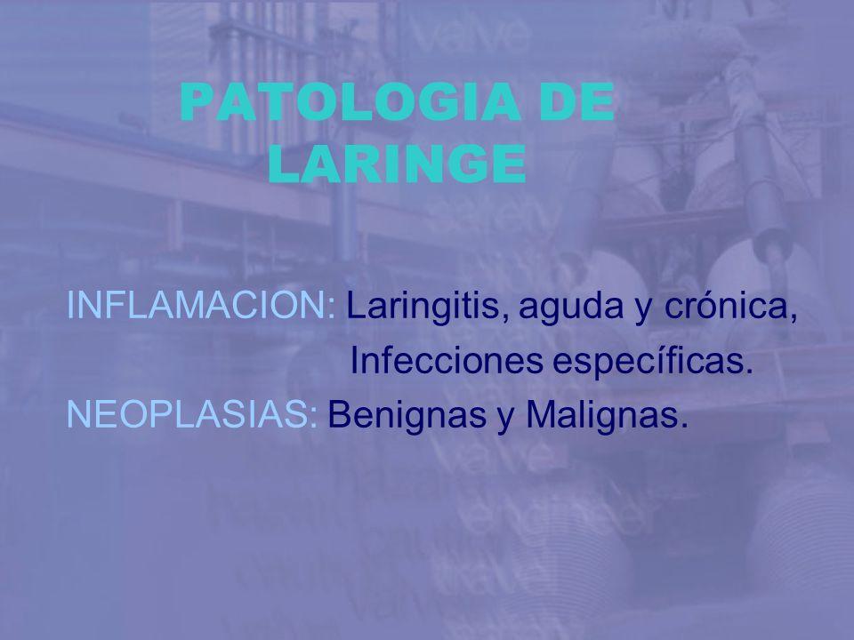 PATOLOGIA DE LARINGE INFLAMACION: Laringitis, aguda y crónica,