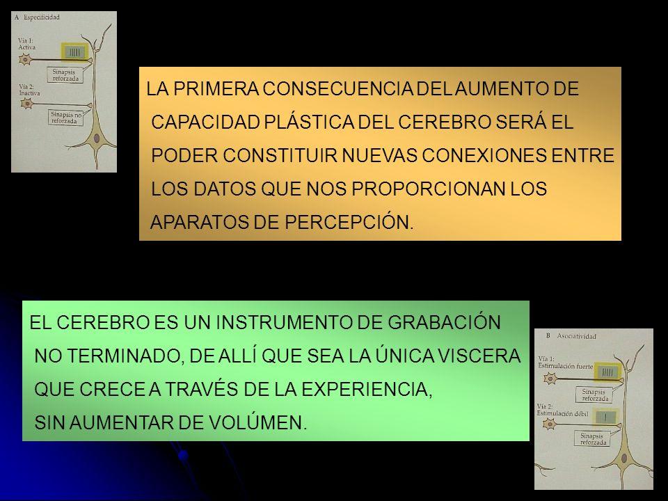 LA PRIMERA CONSECUENCIA DEL AUMENTO DE