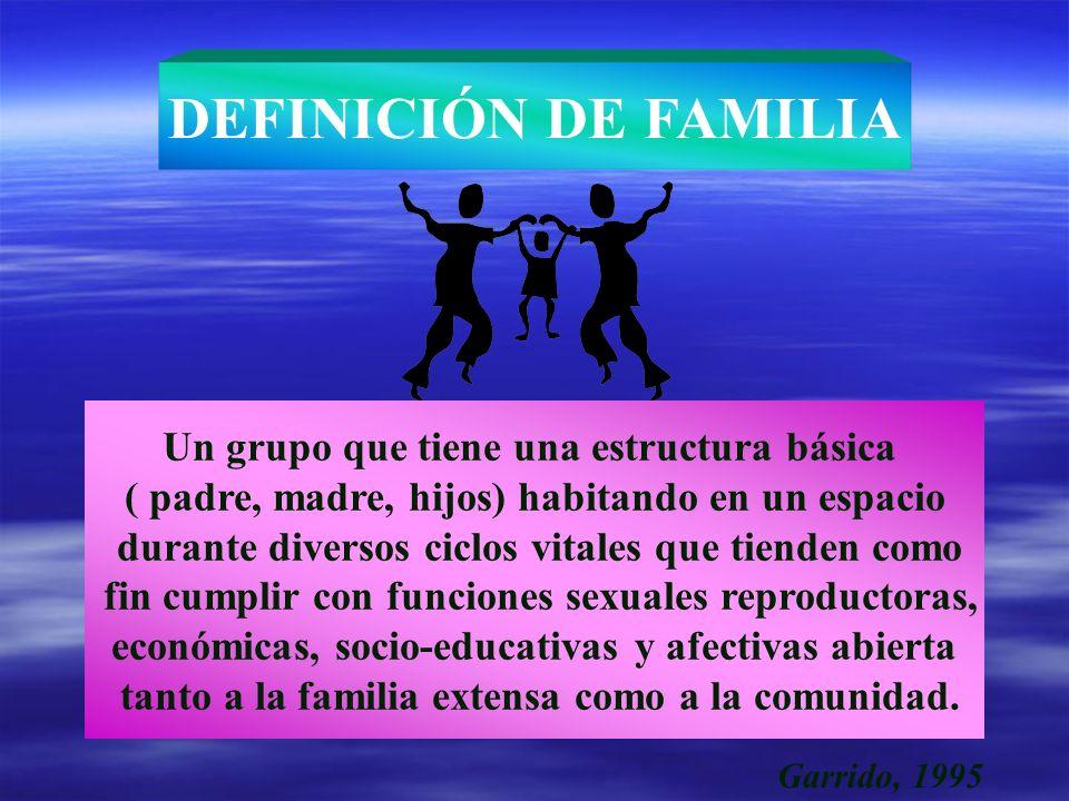 DEFINICIÓN DE FAMILIA Un grupo que tiene una estructura básica