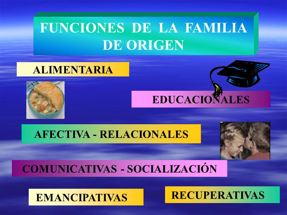 FUNCIONES DE LA FAMILIA DE ORIGEN