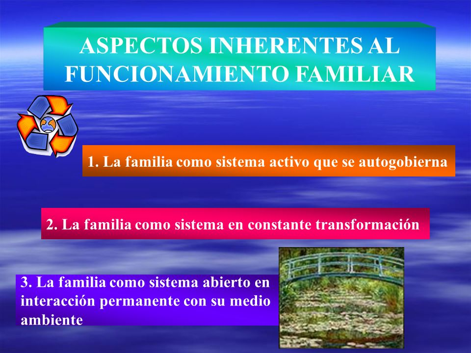 ASPECTOS INHERENTES AL FUNCIONAMIENTO FAMILIAR