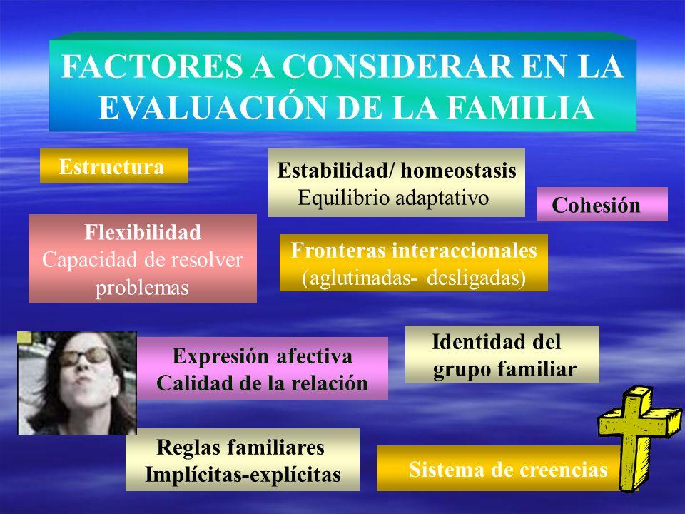 FACTORES A CONSIDERAR EN LA EVALUACIÓN DE LA FAMILIA