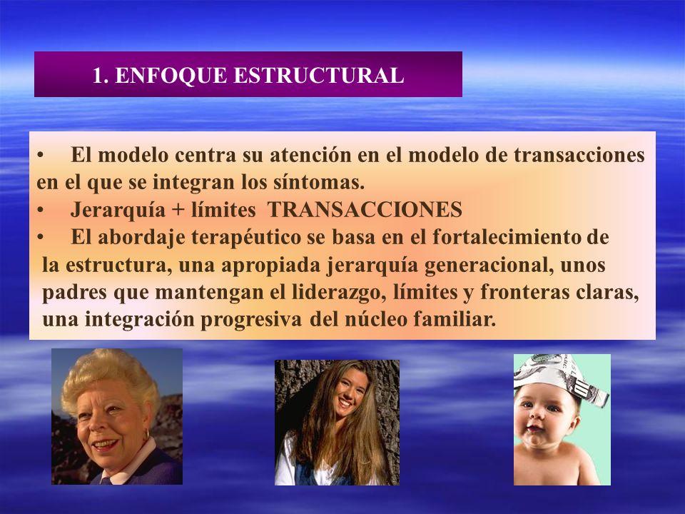1. ENFOQUE ESTRUCTURAL El modelo centra su atención en el modelo de transacciones. en el que se integran los síntomas.