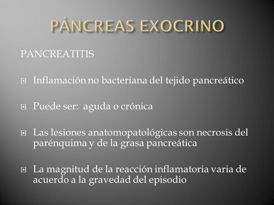 PÁNCREAS EXOCRINO PANCREATITIS