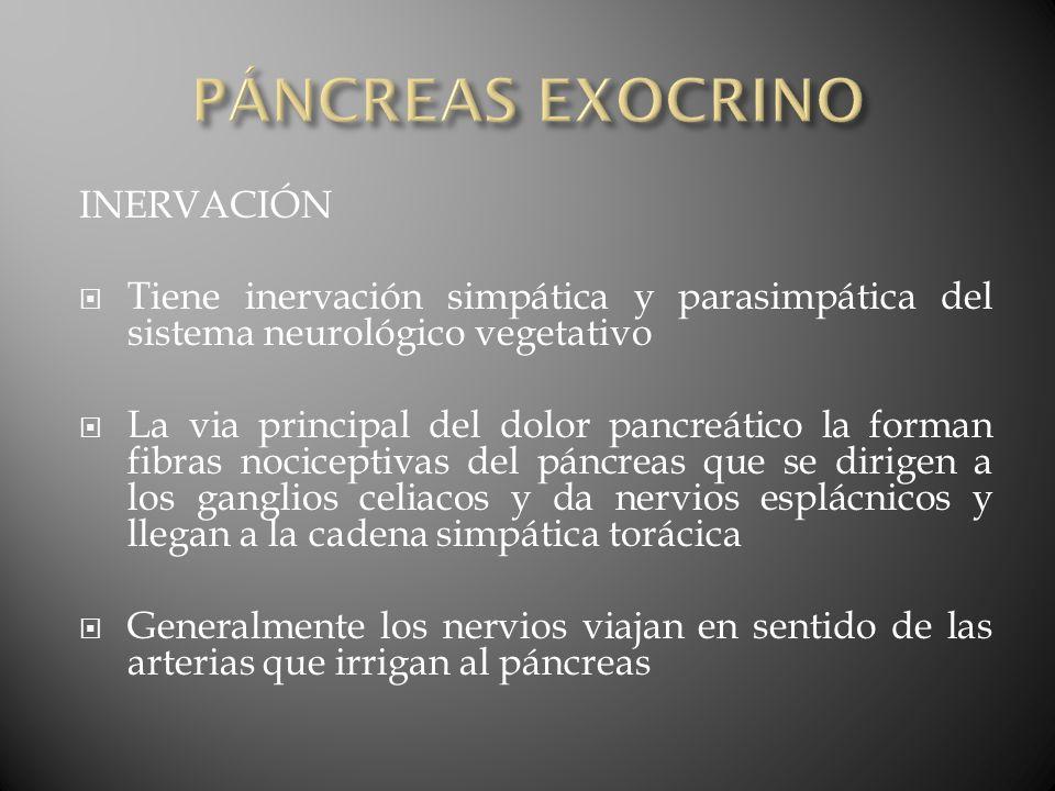 PÁNCREAS EXOCRINO INERVACIÓN