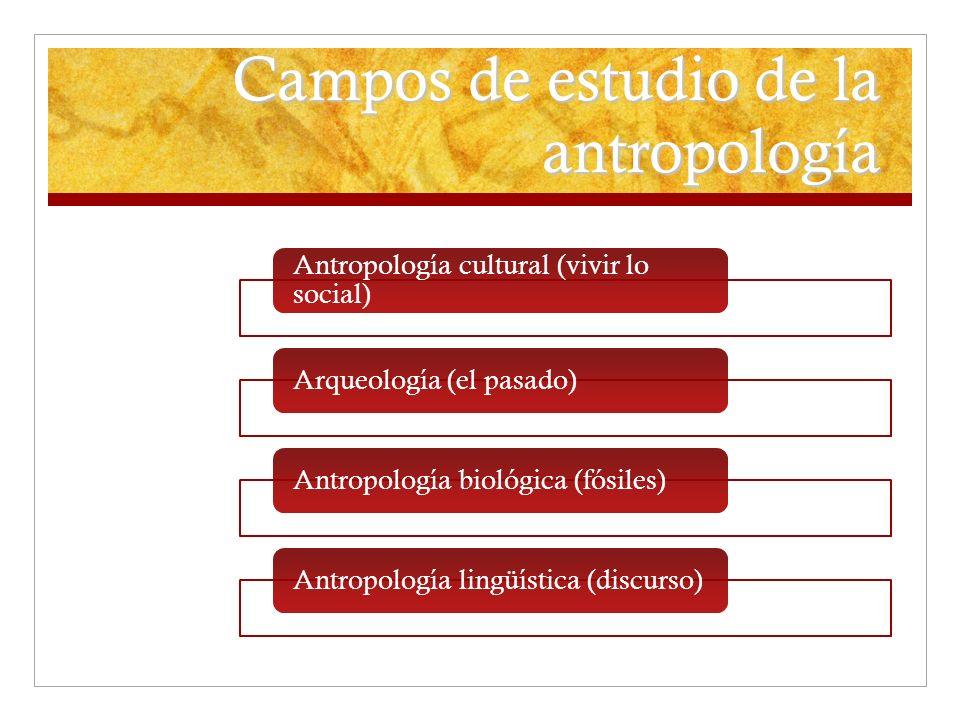 Campos de estudio de la antropología