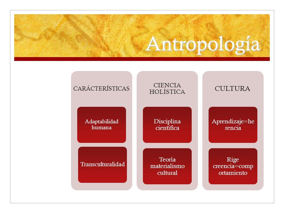 Antropología cultura Ciencia holística Disciplina científica