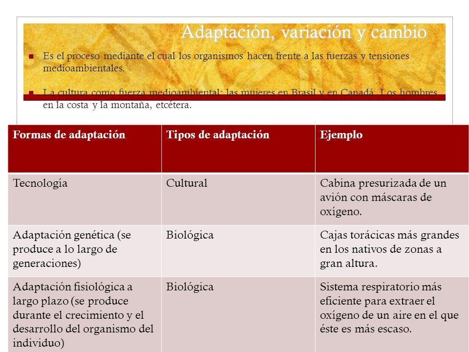 Adaptación, variación y cambio