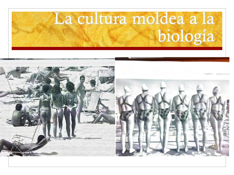 La cultura moldea a la biología
