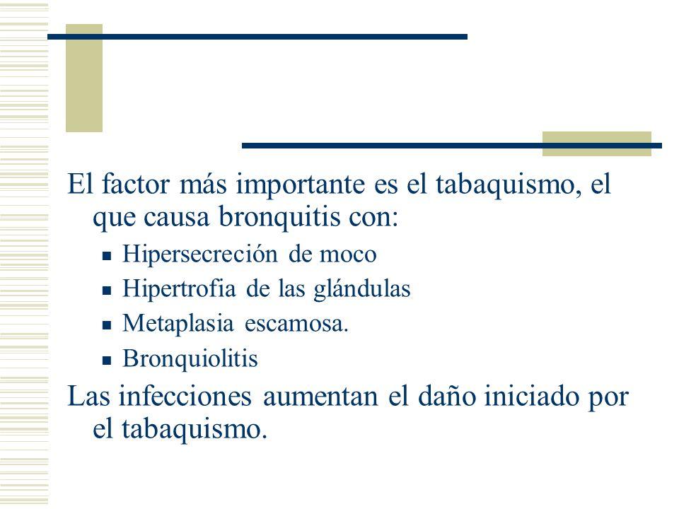 Las infecciones aumentan el daño iniciado por el tabaquismo.