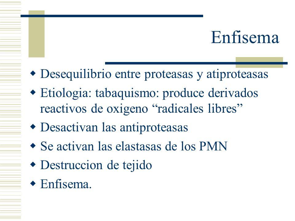 Enfisema Desequilibrio entre proteasas y atiproteasas