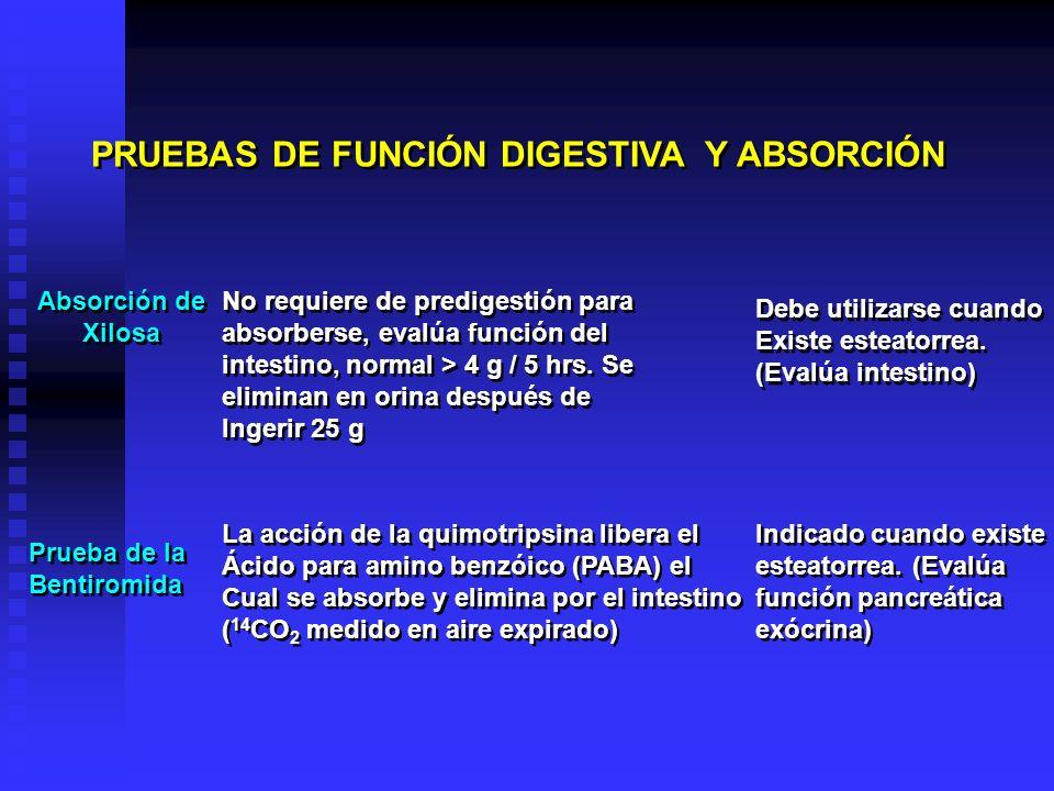 PRUEBAS DE FUNCIÓN DIGESTIVA Y ABSORCIÓN