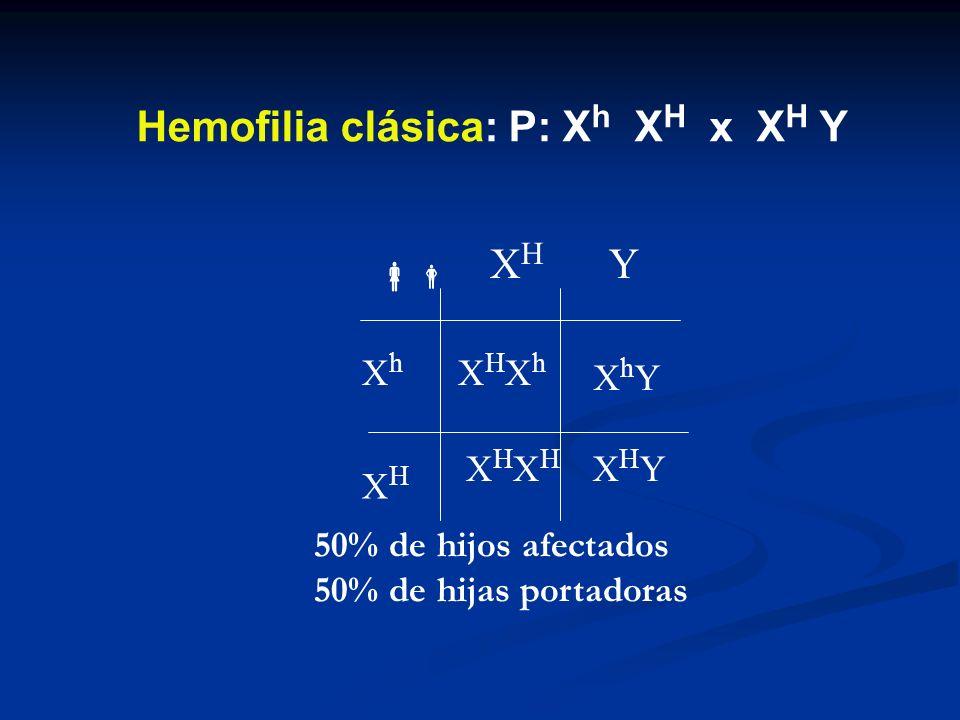 Hemofilia clásica: P: Xh XH x XH Y