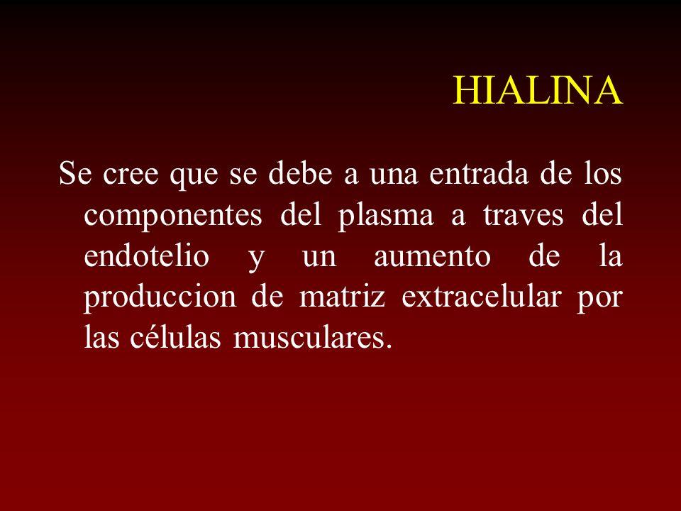 HIALINA