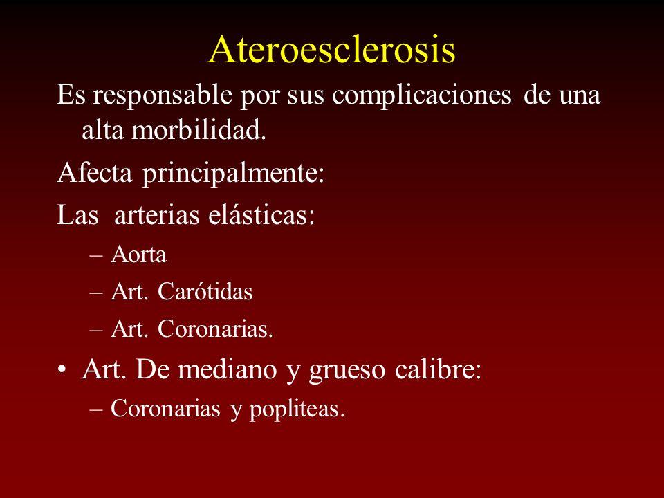 Ateroesclerosis Es responsable por sus complicaciones de una alta morbilidad. Afecta principalmente: