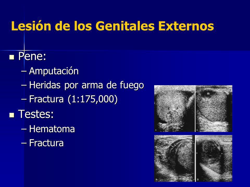 Lesión de los Genitales Externos