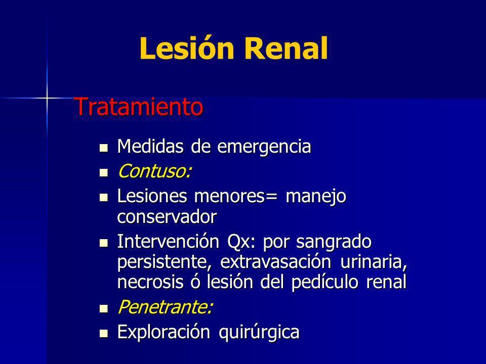 Lesión Renal Tratamiento Medidas de emergencia Contuso: