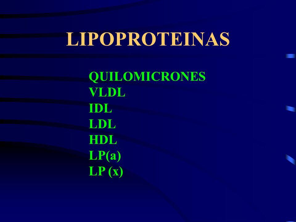 LIPOPROTEINAS QUILOMICRONES VLDL IDL LDL HDL LP(a) LP (x)