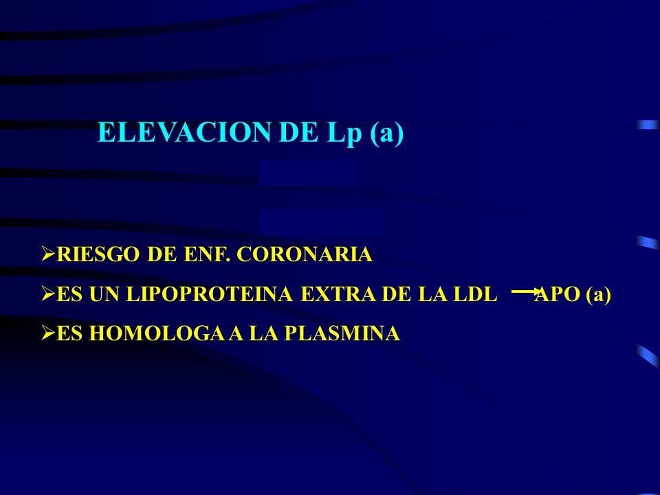 ELEVACION DE Lp (a) RIESGO DE ENF. CORONARIA