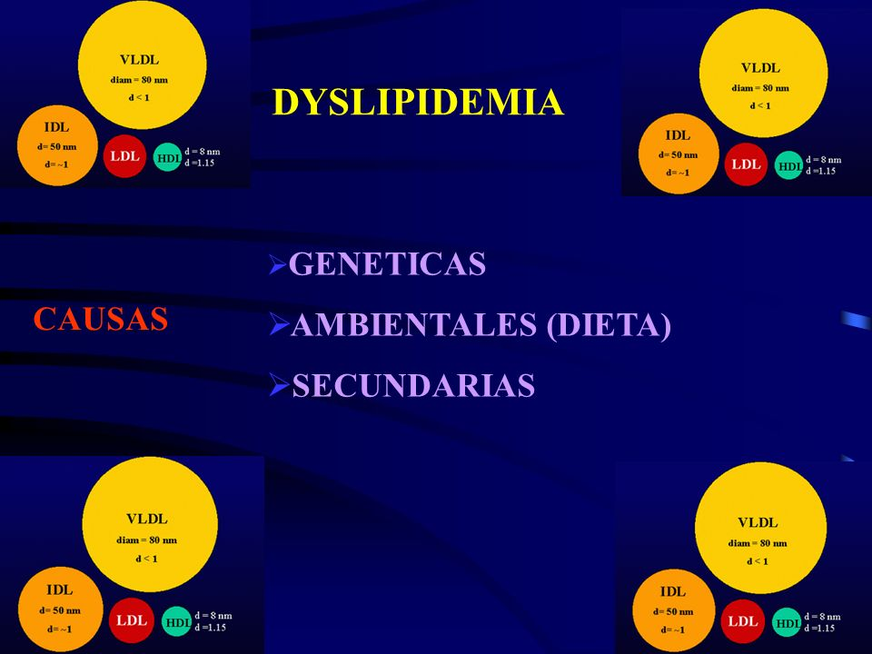 DYSLIPIDEMIA GENETICAS AMBIENTALES (DIETA) SECUNDARIAS CAUSAS