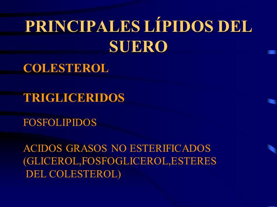 PRINCIPALES LÍPIDOS DEL SUERO