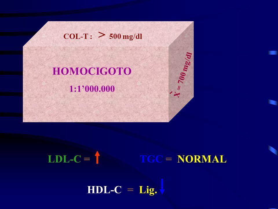 HOMOCIGOTO LDL-C = TGC = NORMAL HDL-C = Lig. 1:1'000.000