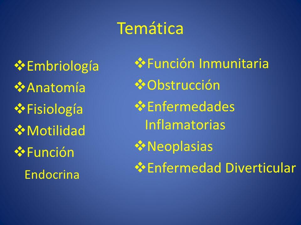 Temática Función Inmunitaria Embriología Obstrucción Anatomía