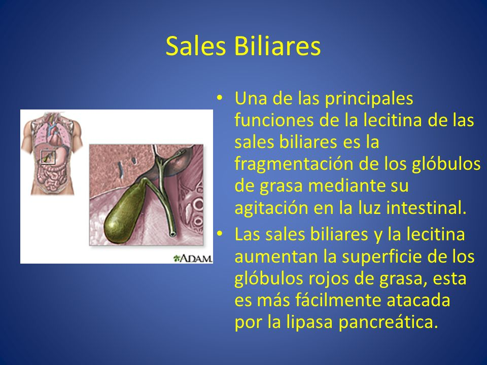 Sales Biliares