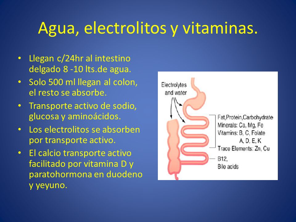 Agua, electrolitos y vitaminas.