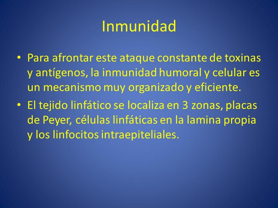 Inmunidad Para afrontar este ataque constante de toxinas y antígenos, la inmunidad humoral y celular es un mecanismo muy organizado y eficiente.