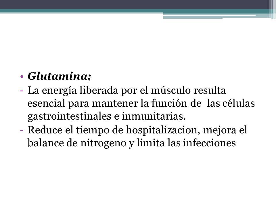 Glutamina;La energía liberada por el músculo resulta esencial para mantener la función de las células gastrointestinales e inmunitarias.